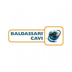 Baldassari-Cavi_logo