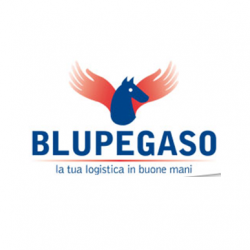 BluPegaso-logo