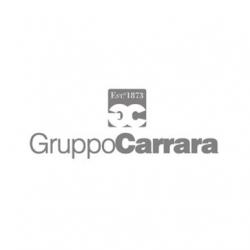 gruppo-carrara-logo
