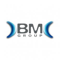 BMGroup_logo