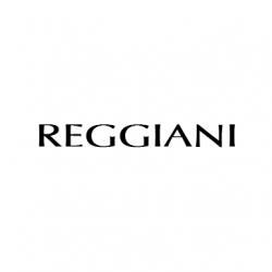 Reggiani Scaffalature Parma.Lanificio Reggiani Incasgroup