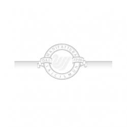 manifattura-valcismon-logo